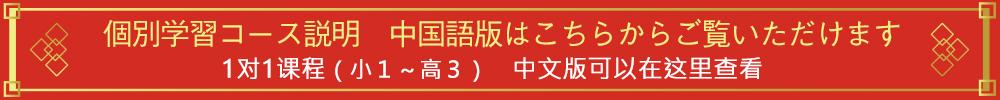 個別学習 中国語版